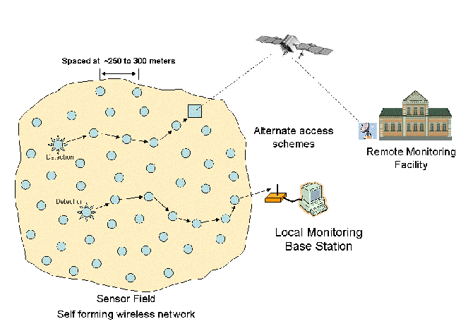 Wireless Sensor Network - Remote Monitoring